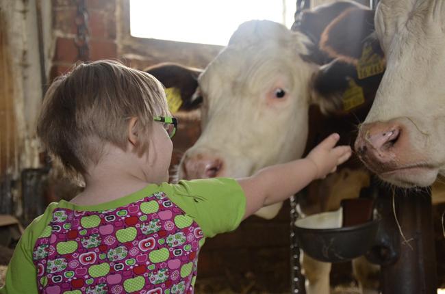 lait cru qui protège les enfants de l'asthme allergique