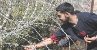 Soirée Palestine : occupation et résistances paysannes