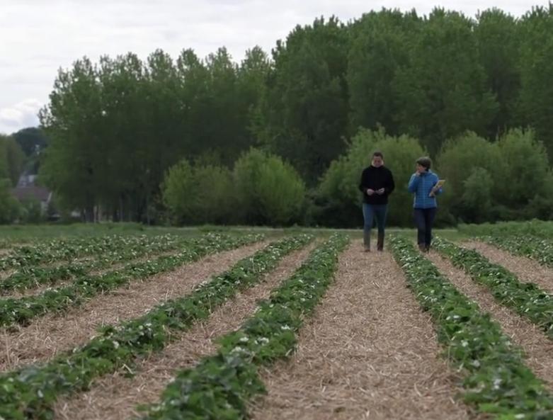 Diagnostic agriculture paysanne