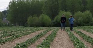 Greenpeace soutient l'agriculture paysanne. Vous aussi ?