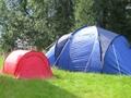 Camp à la ferme du 11 au 25 juillet 2015
