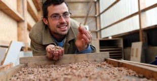 Les pâtes bio du Barbu fabriquées à la ferme de la Guilbardière