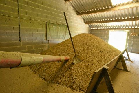 Stockage des céréales bio