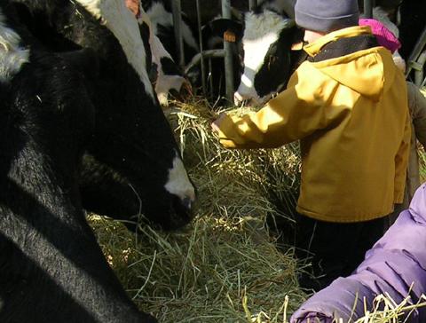 Enfants à la ferme bio