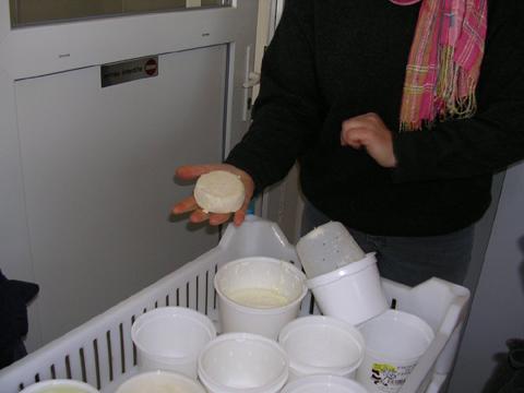 Fabrication de fromage blanc bio à la ferme