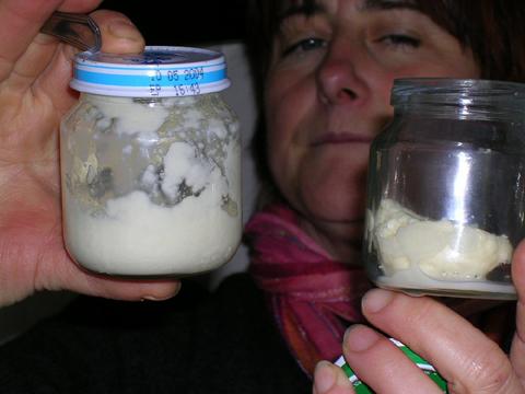 Fabrication du beurre avec les enfants à la ferme