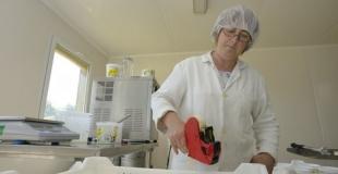 La fabrication du fromage blanc